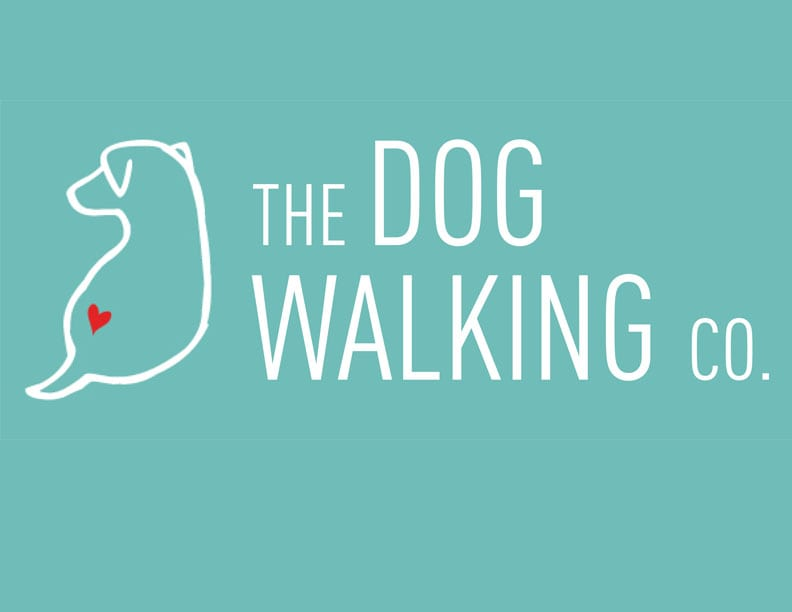 how to get your pet related company funded on indiegogo With the dog walking company