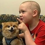 Measuring Canines and Childhood Cancer