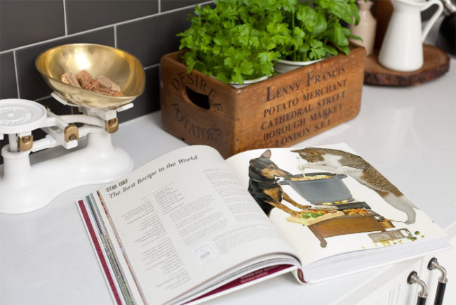 cookbook for pets open to pets stirring soup